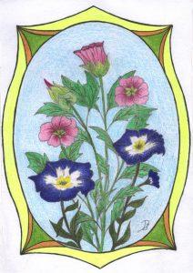 02.bloemen-schoonheid
