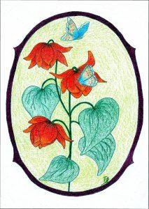 09b-vlinderenklokjes