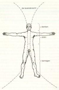 metamorfose massage, denkbeeld
