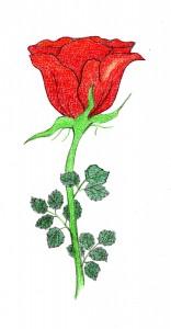 rouwgedichten en overlijdensgedichten, roos