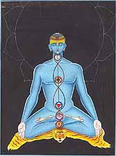 de 7 chakra's in beeld