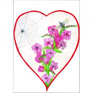 slangenkruid met bijen spin, -bloemen